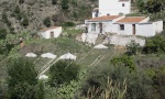 002. CORTIJO between Frigiliana and Torrox.